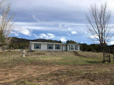 52817 KE RD, Molina, CO 81646 - Photo 1