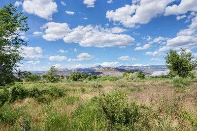49088 KE RD, Mesa, CO 81643 - Photo 2