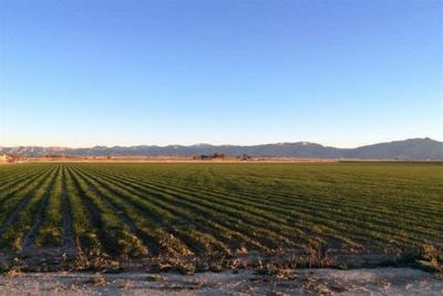 2012 M 1/4 RD, Fruita, CO 81521 - Photo 1