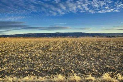 1333 O 1/2 RD, LOMA, CO 81524 - Photo 2