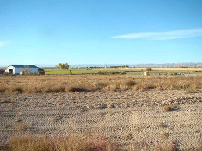 1591 CATTLE DR, Loma, CO 81524 - Photo 1