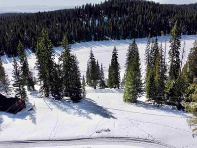 TBD HILLTOP DRIVE, Cedaredge, CO 81413 - Photo 1
