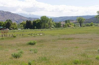 TBD HIGHWAY 65, Mesa, CO 81643 - Photo 2