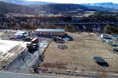 12303 54 7/10 ROAD, Molina, CO 81646 - Photo 2