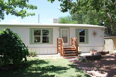 311 1/2 PINE ST, Grand Junction, CO 81503 - Photo 2