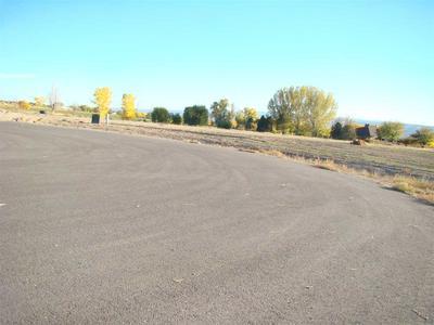 1642 SADDLE RING CT, Loma, CO 81524 - Photo 2