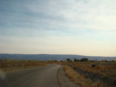 1587 CATTLE DR, Loma, CO 81524 - Photo 1