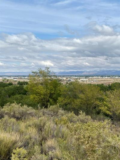 2351 PROMONTORY CT, Grand Junction, CO 81507 - Photo 2