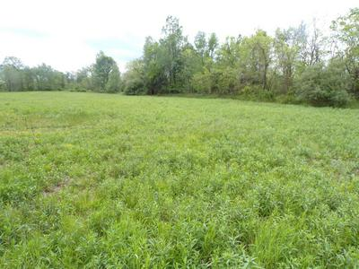 8446 ELMBURG RD, Bagdad, KY 40003 - Photo 2