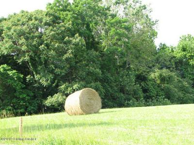 #4 RIVER VALLEY WAY, BEDFORD, KY 40006 - Photo 1
