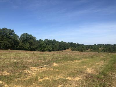 LOT 0 ALLEN RD, Brandenburg, KY 40108 - Photo 2