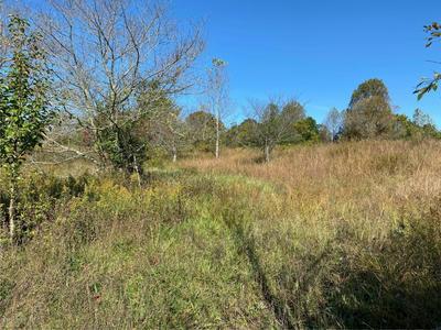 0 N CHESTNUT GROVE RD N RD, Bonnieville, KY 42713 - Photo 1