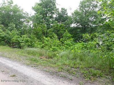918 ROCK LN, Mammoth Cave, KY 42259 - Photo 2