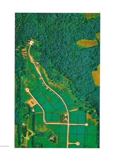 0 SYCAMORE TRAIL, BEDFORD, KY 40006 - Photo 2