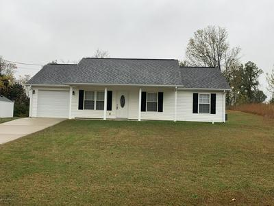 278 SCHOOL SIDE DR, Brandenburg, KY 40108 - Photo 1
