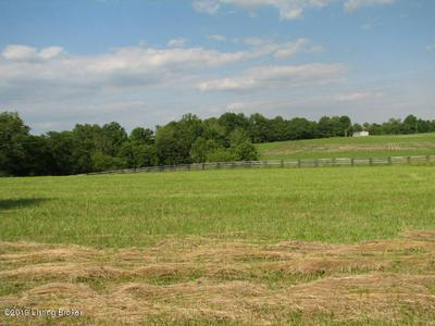 LOT #6 RIVER VALLEY WAY, Bedford, KY 40006 - Photo 1