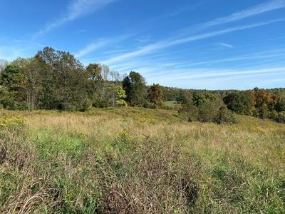0 N CHESTNUT GROVE RD, Bonnieville, KY 42713 - Photo 1