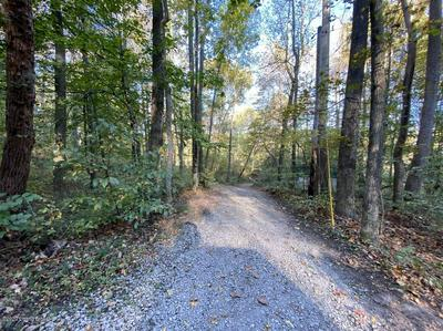 1179 THOMASON CEMETERY RD, Leitchfield, KY 42754 - Photo 2