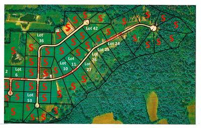 42 LOCUST GROVE TRAIL, BEDFORD, KY 40006 - Photo 1