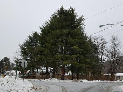 5 HENRY ST, Warrensburg, NY 12885 - Photo 2