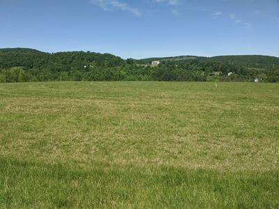 0 SUMMIT ST, Richmondville, NY 12149 - Photo 1