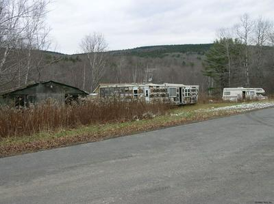 459 CLAPPER HOLLOW RD, JEFFERSON, NY 12093 - Photo 2
