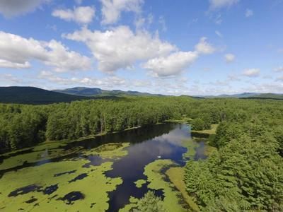 0 ANTLER LAKE RD, Johnsburg, NY 12843 - Photo 1