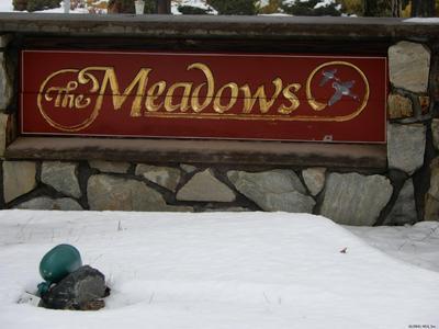 120 MEADOWS DR, Melrose, NY 12121 - Photo 1