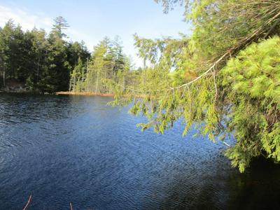 FOREST LAKE RD, Warrensburg, NY 12885 - Photo 1