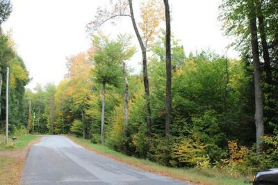 263 PARKER RD, Hadley, NY 12835 - Photo 2