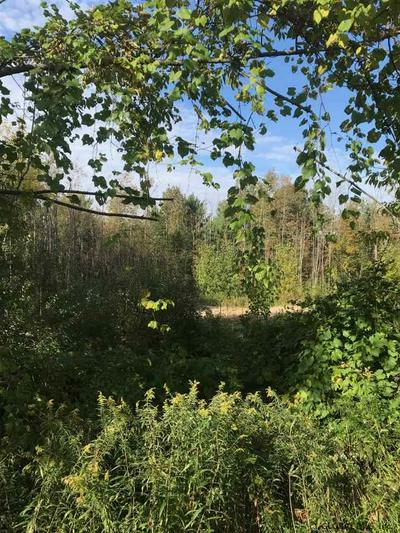 LOT 2 PERTH RD, Galway, NY 12086 - Photo 2