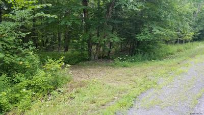 0 COUNTY RT 413, Westerlo, NY 12193 - Photo 2