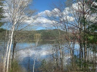 0 WHITNEY AVE, Schroon, NY 12870 - Photo 2