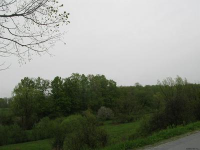 0 BUTTON ST, Canajoharie, NY 13317 - Photo 2