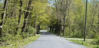 000 BLY HOLLOW RD, Petersburgh, NY 12022 - Photo 2