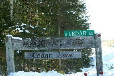 148 CEDAR LN, Cedarville, MI 49719 - Photo 2