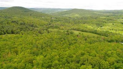 193 E HOLLOW RD, Petersburgh, NY 12138 - Photo 2