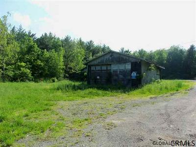 0 DILL BROOK RD, Petersburgh, NY 12138 - Photo 2