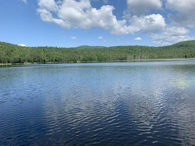BEAVER DAM RD, Schroon Lake, NY 12870 - Photo 1