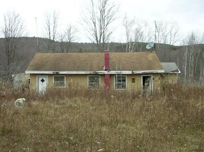 459 CLAPPER HOLLOW RD, JEFFERSON, NY 12093 - Photo 1