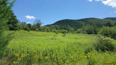 O EAST HOLLOW RD, Petersburgh, NY 12138 - Photo 1