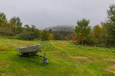 1320 STATE ROUTE 30, Wells, NY 12190 - Photo 2