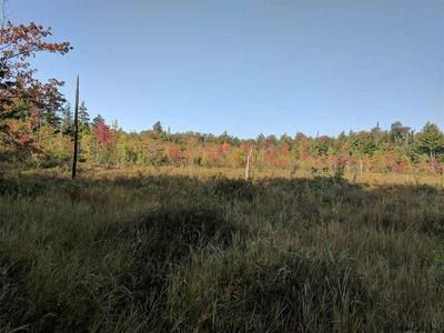 000 FOX HILL RD, Northville, NY 12134 - Photo 1