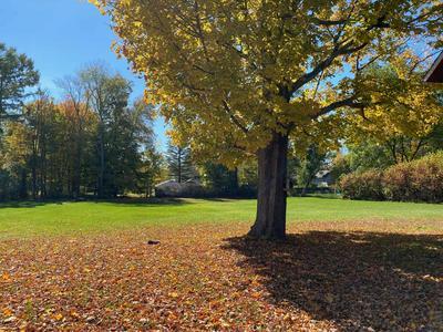 60 E MAIN ST, Cambridge, NY 12816 - Photo 2