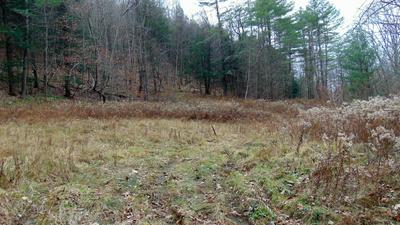 0 COTTON HILL RD, Middleburgh, NY 12122 - Photo 2