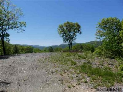 00 GOODELL RD, Petersburgh, NY 12138 - Photo 2
