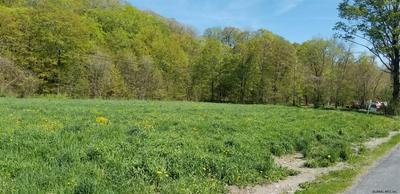 BLY HOLLOW RD, Petersburgh, NY 12022 - Photo 2