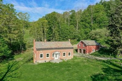 407 PERRY HILL RD, Shushan, NY 12873 - Photo 1