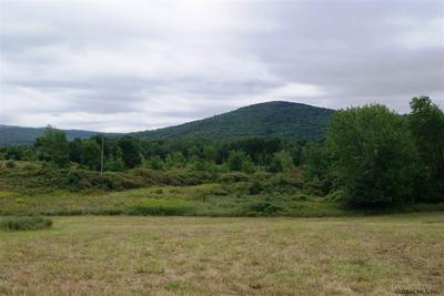 LOT 23 CONGRESSMAN DR, Summit, NY 12175 - Photo 1