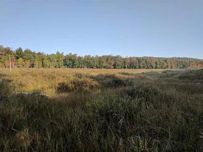 000 FOX HILL RD, Northville, NY 12134 - Photo 2